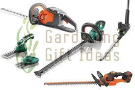 Cordless Hedge Trimmer in 2020