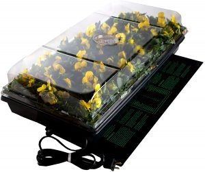 Plant starter seeding kits and trays