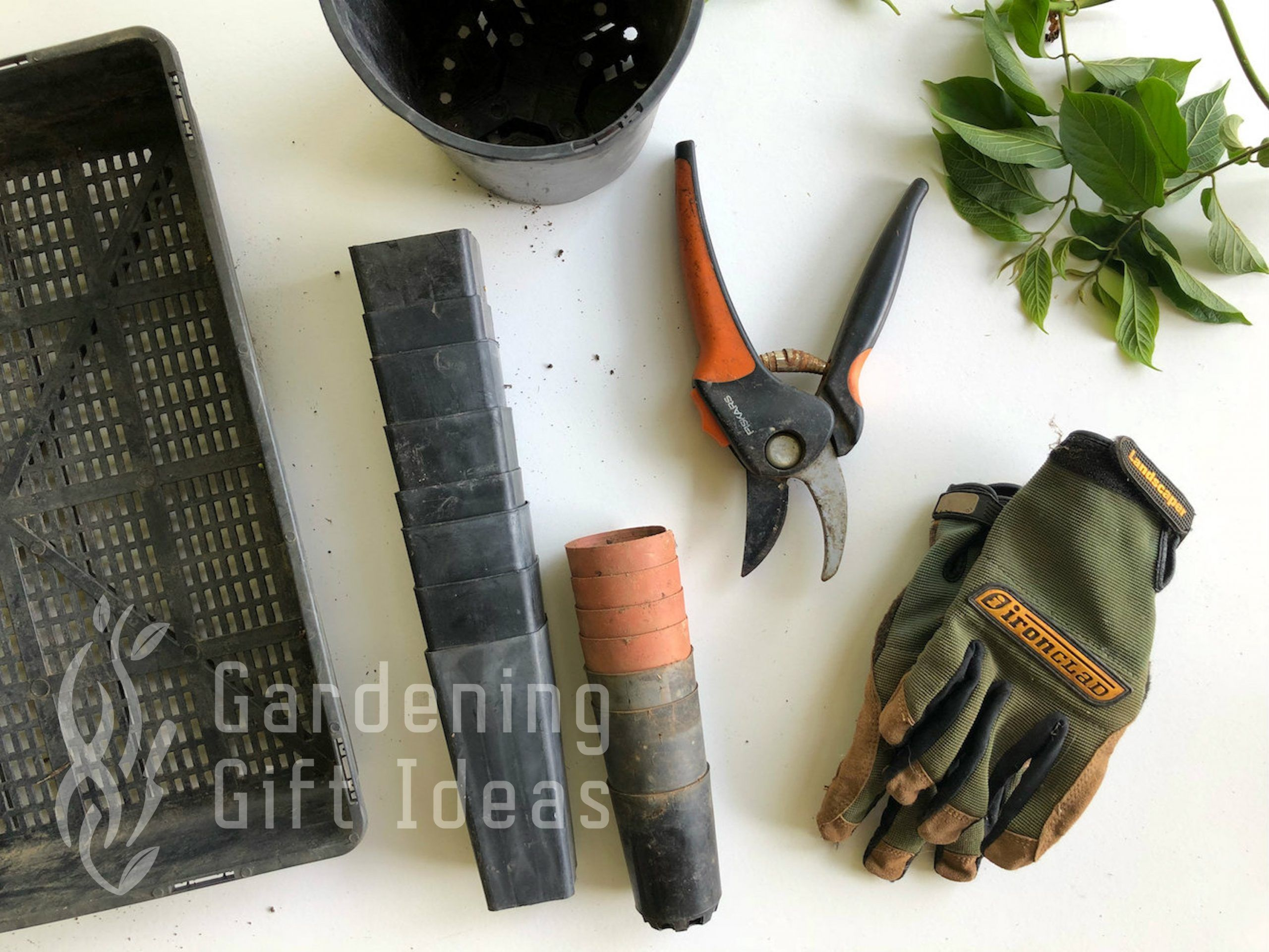 Best gardening gifts ideas