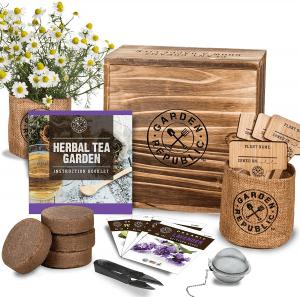 Indoor Herb Garden Seed Starter Kit